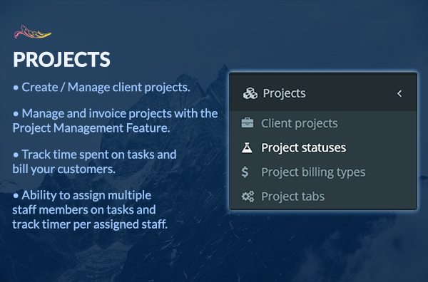 Client Projects